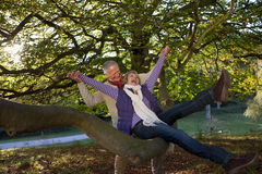 Laughing senior couple sitting playfully on large tree branch royalty free stock images