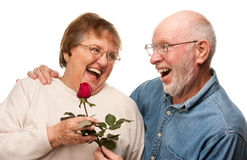 Laughing Senior Husband Giving Red Rose to Wife Stock Photography