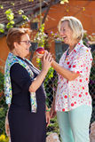 Laughing senior woman giving her friend an apple. Laughing senior women giving her friend a luscious ripe red apple as they stand together in the sunshine in the stock photo