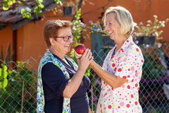 Laughing senior women with a red apple. Standing together in the sunshine in a garden as they debate who is going to eat it stock photography