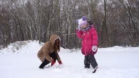 Laughing sisters having fun at the winter day. Laughing sisters having fun at the snowy winter day stock video