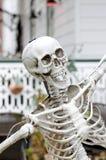 Laughing Skeleton Stock Photo