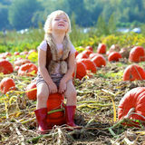 Laughing small girl playing on pumpkin field Stock Photo