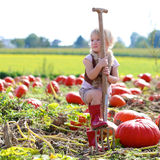 Laughing small girl playing on pumpkin field Royalty Free Stock Photo