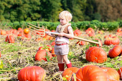 Laughing small girl playing on pumpkin field Stock Image
