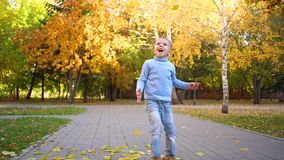 A child in the autumn Park throws yellow leaves in the air. Laughing and smiling happy child stock video footage