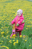 Laughing toddler girl standing at spring flowering dandelions meadow on kids pink and yellow tricycle Stock Photo