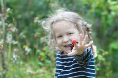 Laughing two years old blonde girl sharing red garden raspberry fruit Stock Image