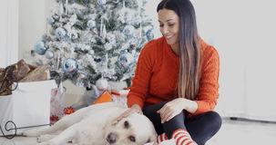 Laughing young woman with her dog at Christmas Royalty Free Stock Photos