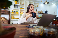 Laughing young woman working on laptop while holding a cup of te. Side low angle of smiling woman. Holding a cup of tea. Looking at the screen of laptop Stock Photos