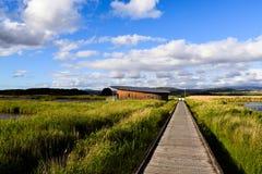 Launceston, остров Tamar Стоковое Изображение