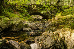 Launchy Gill at Thirlmere Royalty Free Stock Photos