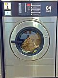 Laundromat. Clothes being washed in a coin-operated washing machine in a laundromat in Singapore stock image
