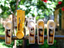 Laundry clips in the garden royalty free stock photography