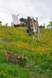 Laundry drying on clothesline Stock Image