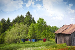 Laundry drying on clothesline on a summer day stock image
