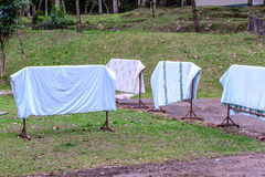 Laundry drying in a garden on a sunny summer day Stock Image