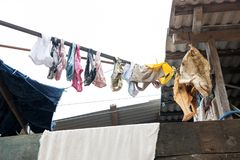 Laundry and fish drying in boca de valeria, brazil Royalty Free Stock Photo