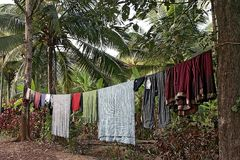 Laundry in jungle Stock Photo