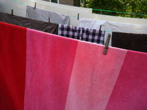 Laundry: towels hanging on line. Bright pink striped towel hanging on line Royalty Free Stock Photos