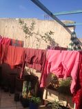 laundry under the sun stock photography