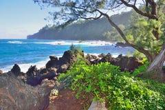 Laupahoehoe海滩公园在夏威夷的大岛 免版税图库摄影