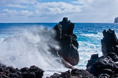 Laupahoehoe Point, Hawaii Stock Images
