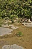 Lauquet del fiume in Corbieres, Francia fotografia stock