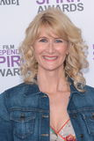 Laura Dern Royalty Free Stock Image