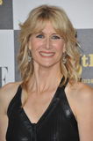 Laura Dern Stock Image