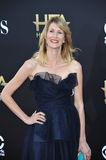 Laura Dern Stock Photo