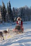 Laura Neese in the 2018 Yukon Quest. FAIRBANKS, ALASKA - FEBRUARY 3, 2018: Race veteran Laura Neese, from McMillan, MI, on the Chena River during the 2018 Yukon Royalty Free Stock Photos