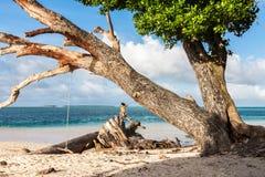 Laura strand Azurt blått turkosvatten av lagun Majuro atoll, Marshallöarna, Mikronesien, Oceanien Kvinnan gör en fotostund fotografering för bildbyråer