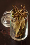 Laurel bay leaves. Stock Photo