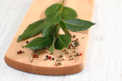 Laurel bay leaves and pepper Stock Photos