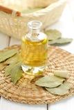 Laurel oil. Laurel bay oil in a glass bowl stock photos