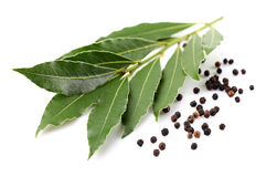 Laurel with black pepper Royalty Free Stock Photography