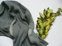 Laurel bouquet and gray male sweater on a white background Royalty Free Stock Photography