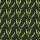 Laurel Branch Background senza cuciture Fondo di ripetizione sveglio di vettore del grano Priorità bassa del frumento Fotografia Stock