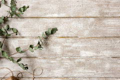 Laurel branch on wood background flat lay Stock Image