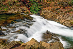Laurel Creek Cascade Immagine Stock Libera da Diritti