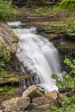 Laurel Creek Waterfall Royalty-vrije Stock Afbeeldingen