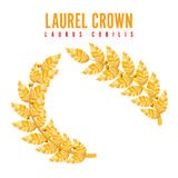 Laurel Crown Corona greca con le foglie dorate Illustrazione di vettore illustrazione di stock
