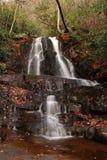 Laurel Falls Royalty Free Stock Image