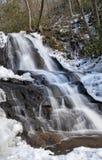 Laurel Falls nel parco nazionale di Great Smoky Mountains Fotografia Stock