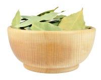 Laurel leaves Stock Image