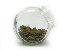 Laurel leaves in a jar Stock Photos