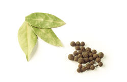 Laurel leaves with pepper Royalty Free Stock Image