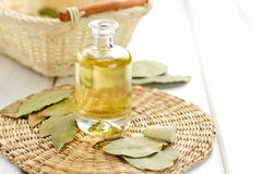 Laurel oil Royalty Free Stock Photography