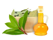 Laurel oil. In a bottle on a white background stock photography